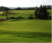 Golf_The Westin Campo Real