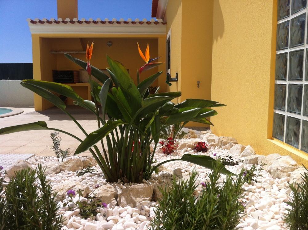 Garden + outdoor kitchen
